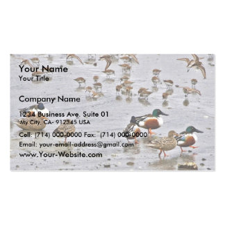 Northern Shovelers Double-Sided Standard Business Cards (Pack Of 100)