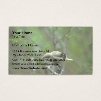 Northern Shrike Business Card