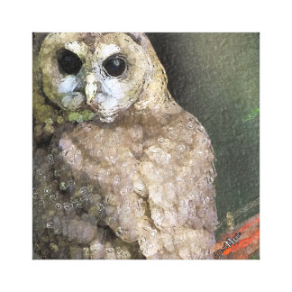Northern Spotted Owl Canvas Wall Art