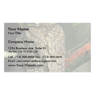 Northern Spotted Owl Double-Sided Standard Business Cards (Pack Of 100)