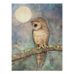 Northern Spotted Owl Fine Art Wildlife Posters
