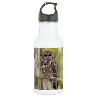 Northern Spotted Owl -Last stand in BC 18oz Water Bottle