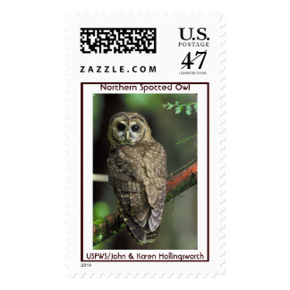 Northern Spotted Owl Postage