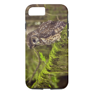 Northern Spotted Owl (Strix occidentals caurina) iPhone 8/7 Case