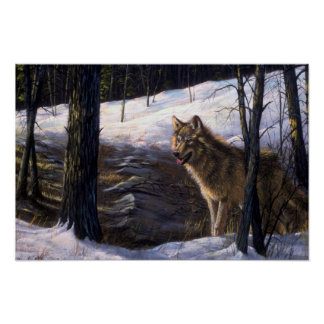 Northern Timber Wolf Poster