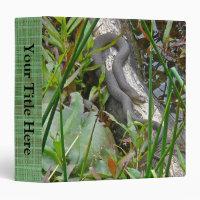 Northern Water Snake Basking on Log Multiple Items
