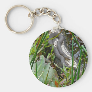 Northern Water Snake Basking on Log Multiple Items Keychain
