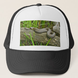 Northern Water Snake Basking on Log Multiple Items Trucker Hat
