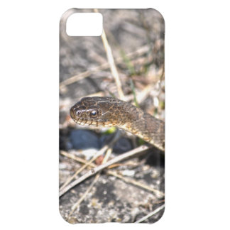 Northern Water Snake Reptile Wildlife Photo iPhone 5C Cover