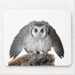 """""""Northern White-faced Owl"""" マウスパッド"""