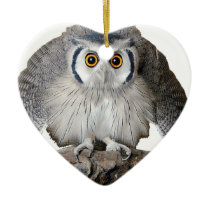 """""""Northern White-faced Owl"""" Ceramic Ornament"""