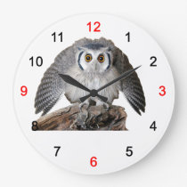 """""""Northern White-faced Owl"""" Large Clock"""