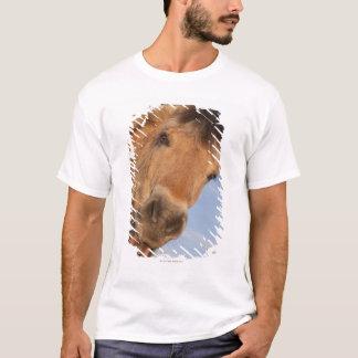 Northumberland, England 2 T-Shirt