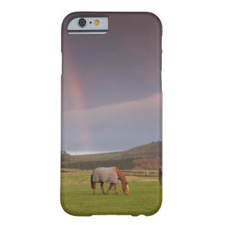 Northumberland, England Barely There iPhone 6 Case