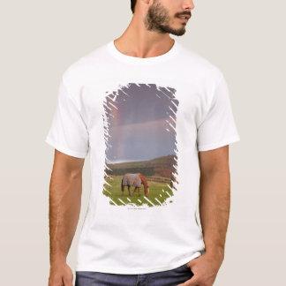 Northumberland, England T-Shirt