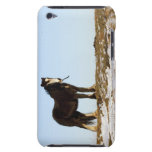 Northumberland, Inglaterra Barely There iPod Protectores