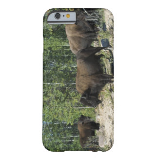 Northwest Territories. Wood Buffalo National Barely There iPhone 6 Case