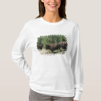 Northwest Territories. Wood Buffalo National T-Shirt