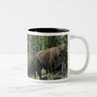 Northwest Territories. Wood Buffalo National Two-Tone Coffee Mug