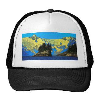 Northwestern Fjord Trucker Hat