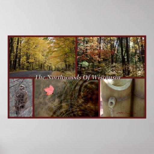 Northwoods Collage Print