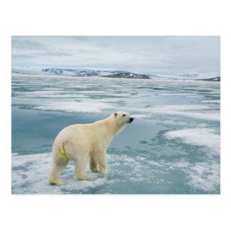 Noruega, archipiélago de Svalbard, Spitsbergen 2 Postales