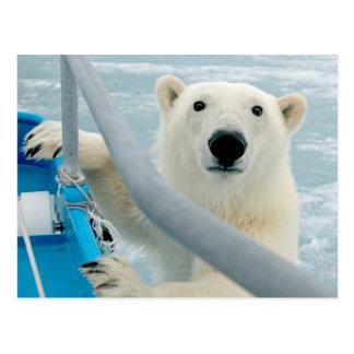 Noruega, archipiélago de Svalbard, Spitsbergen 5 Postales