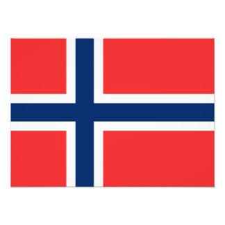 Noruega - bandera noruega cojinete