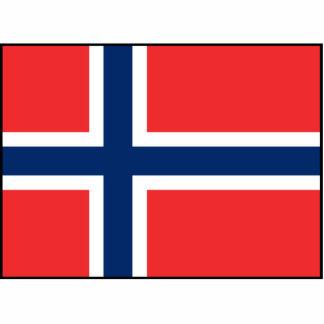 Noruega - bandera noruega fotoescultura vertical