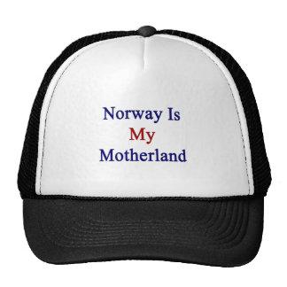 Noruega es mi patria gorros