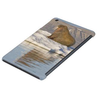 Noruega, Svalbard, isla de Edgeoya, morsa Funda Para iPad Mini Retina