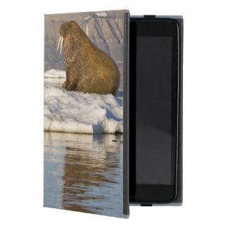 Noruega, Svalbard, isla de Edgeoya, morsa iPad Mini Cárcasas