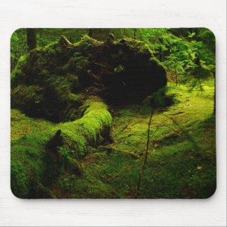 Noruega verde tapete de ratones