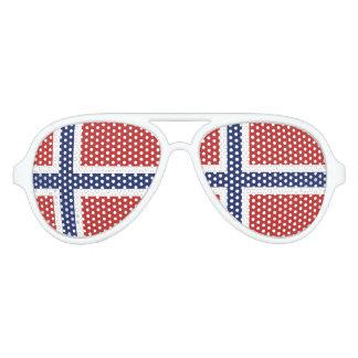 Norway Flag Aviator Sunglasses