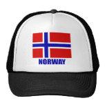 norway_flag_norway10x10 gorros bordados