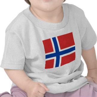 Norway High quality Flag Tshirt