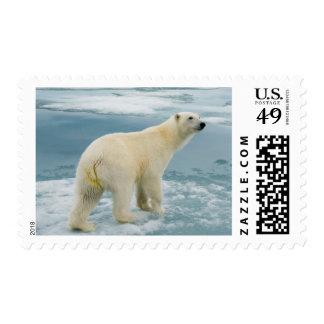 Norway, Svalbard Archipelago, Spitsbergen 2 Postage Stamps