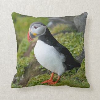 Norway, Svalbard Archipelago, Spitsbergen 9 Pillows