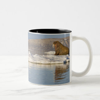 Norway, Svalbard, Edgeoya Island, Walrus Two-Tone Coffee Mug