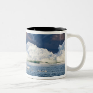 Norway, Svalbard, Spitsbergen Island, Bearded 2 Two-Tone Coffee Mug