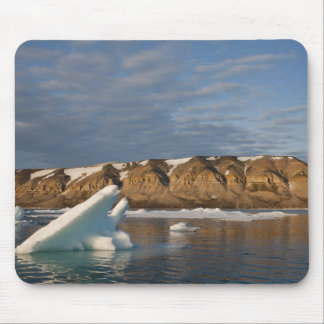 Norway, Svalbard, Spitsbergen Island, Setting Mouse Pad