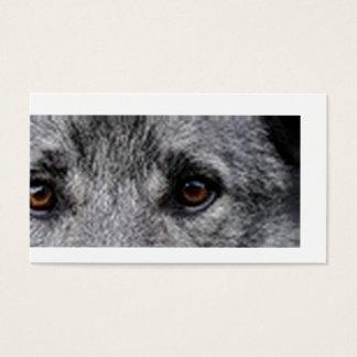 norwegian-elkhound eyes.png business card