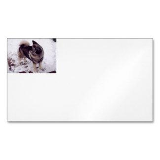 Norwegian_Elkhound_full 2 Business Card Magnet