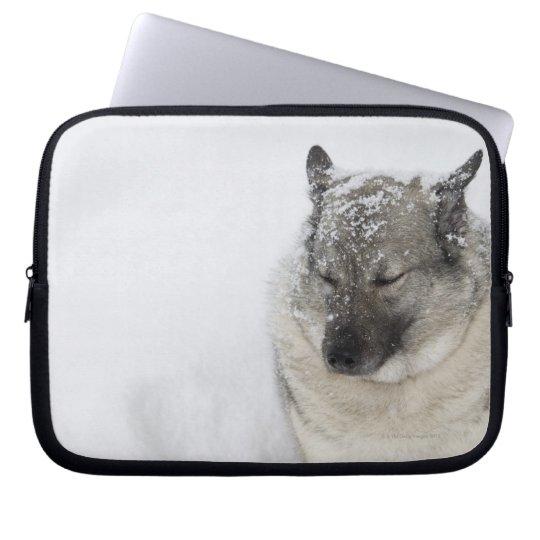 Norwegian Elkhound Laptop Sleeve