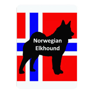 norwegian elkhound name silo on norway-flag.png card