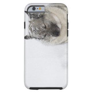 Norwegian Elkhound Tough iPhone 6 Case