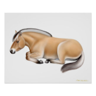 Norwegian Fjord Horse at Rest Print