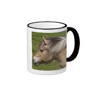 Norwegian Fjord Horse Ringer Mug