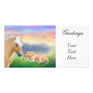Norwegian Fjord Horses Photo Card