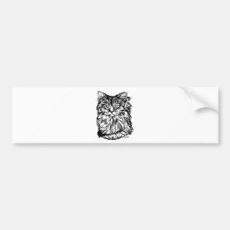 Norwegian forest cat bumper sticker